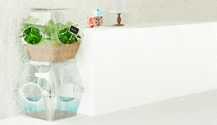 http://www.kickstarter.com/projects/1414985420/the-aqualibrium-garden-the-future-of-food