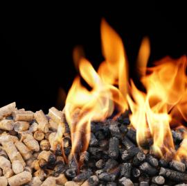 Biomass pellets (vdi.eu)
