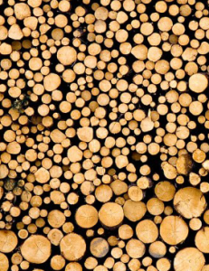Logs cut for biomass (sustainableheatingsolutions.com)