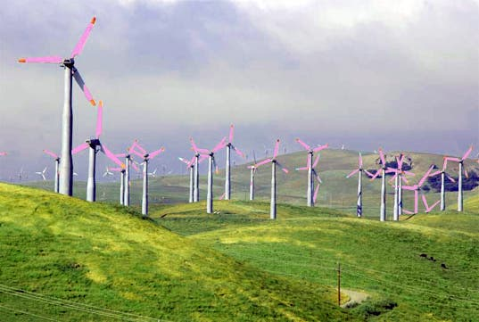 Painting Wind Turbines Purple Could Save Wildlife Make