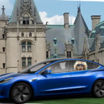 photo image 2018 Tesla Model 3 Long Range Passes The Sister-in-Law Test!