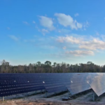 Disney's New 270-Acre Solar Farm Can Power Two Of Its Theme Parks