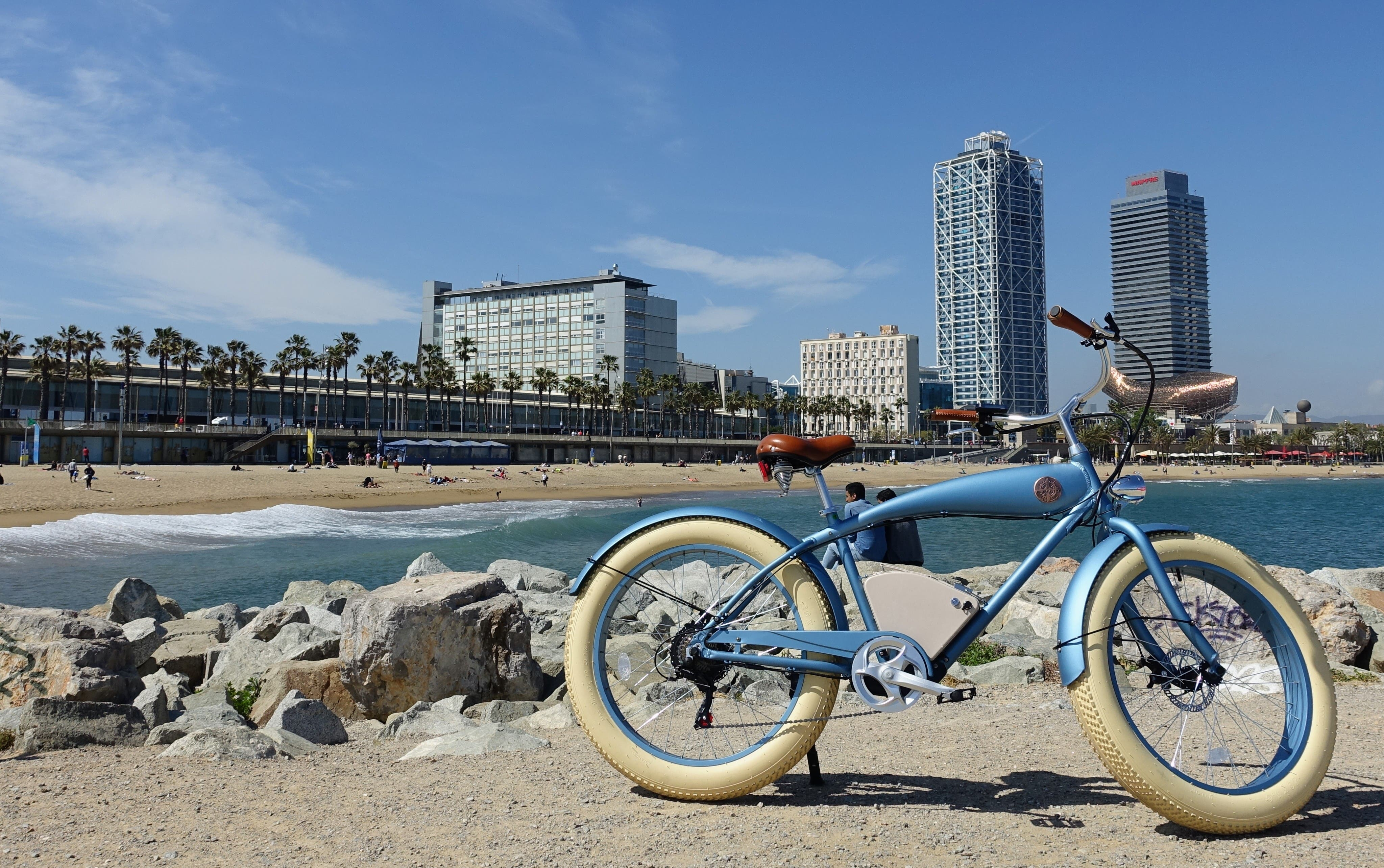 Rayvolt Beachin' e-bike