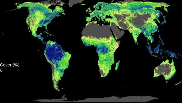 Map of globe with potential for a trillion trees