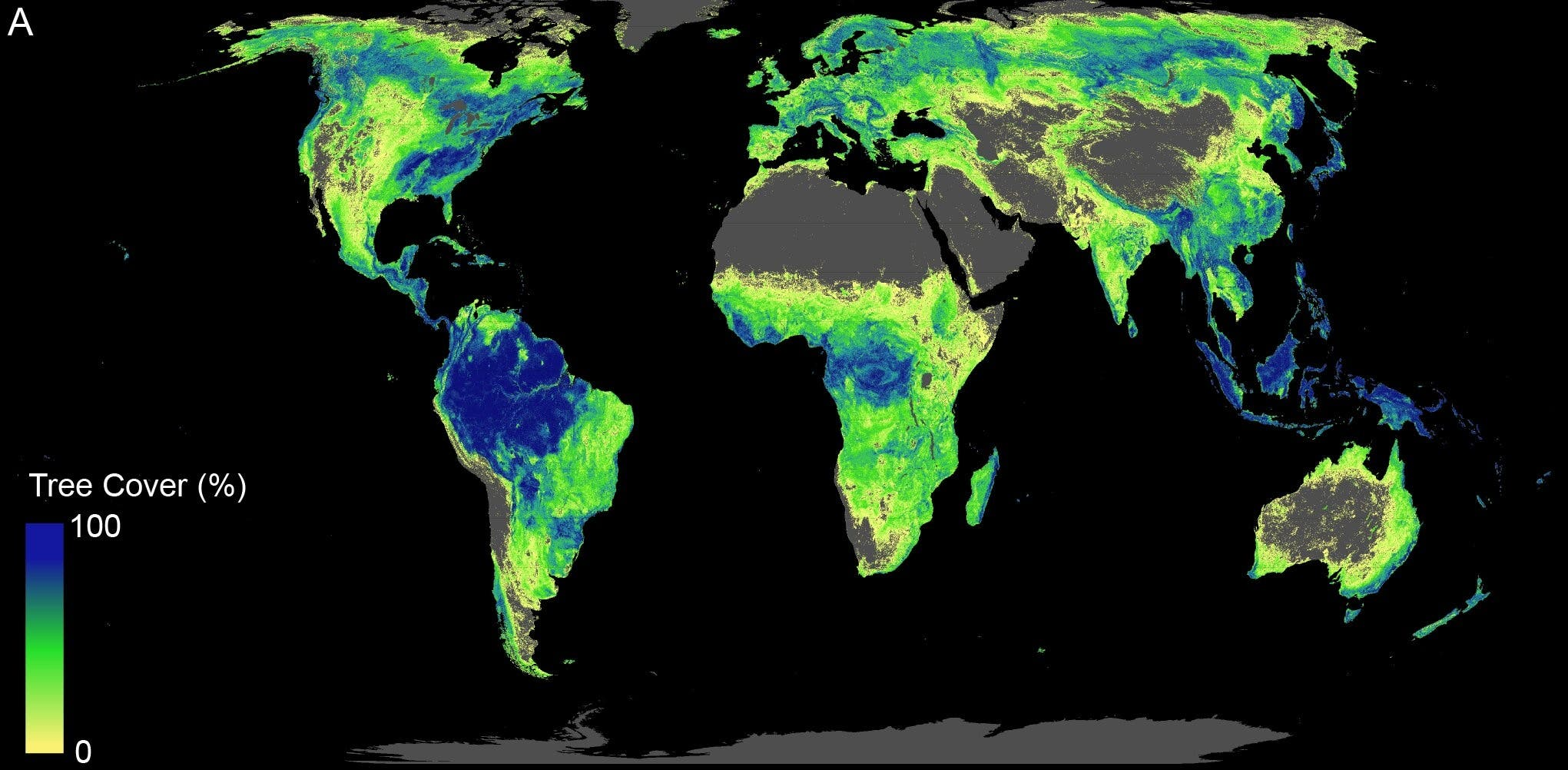 """Map of globe with potential for a trillion trees """"width ="""" 2041 """"height ="""" 1002 """"srcset ="""" https: //cleantechnica.com/files/2019/07/main-qimg-a041d38af50dd0aec10ecd88d334c1e8.jpeg 2041w, https://cleantechnica.com/files/2019/07/main-qimg-a041d38af50dd0aec10ecd88d334c1e8-270x133.jpeg cleantechnica.com/files/2019/07/main-qimg-a041d38af50dd0aec10ecd88d334c1e8-768x377.jpeg 768w, https://cleantechnica.com/files/2019/07/main-qimg-a041d38af50dd0aec10ecd88d334c1e8-570x08dcd8d704c1e8-570x max-width: 2041px) 100vw, 2041px"""
