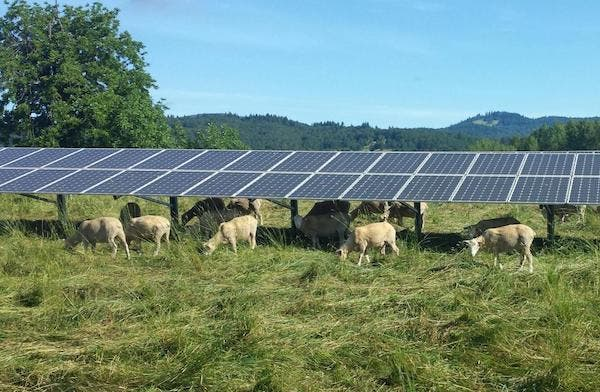 From 1% To 30% Solar Power Without Losing Farmland
