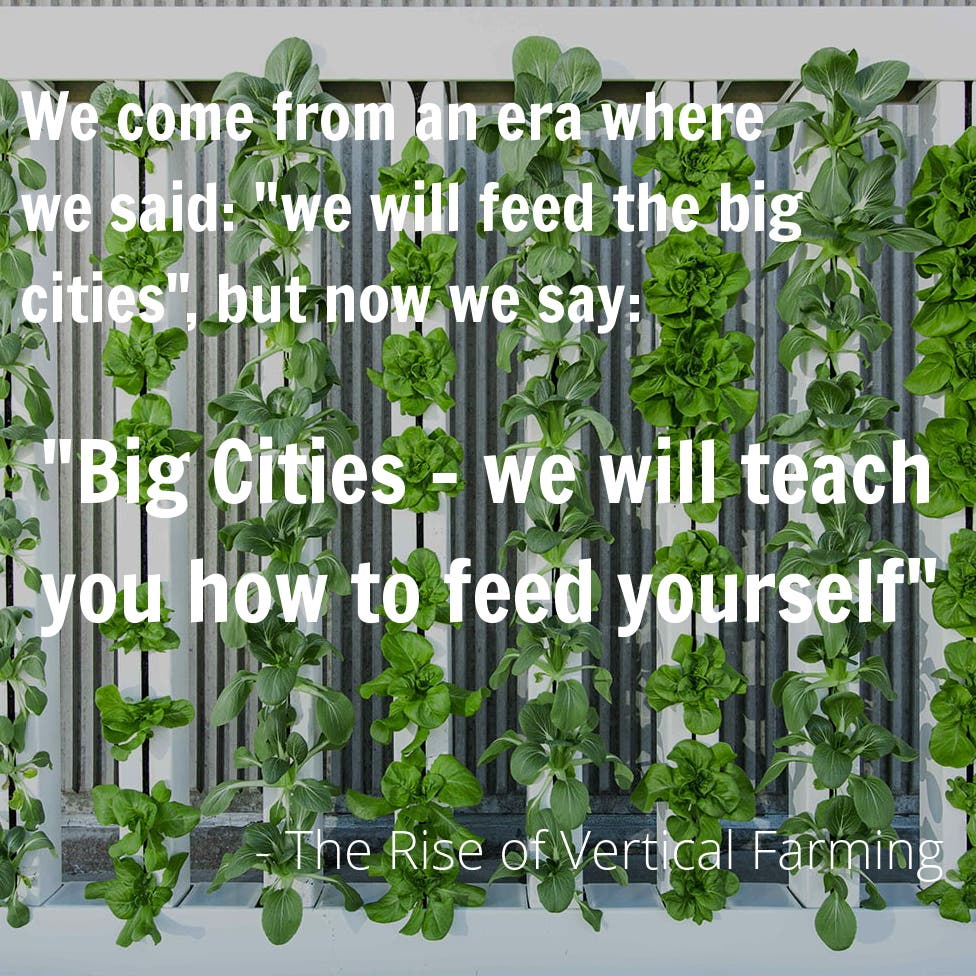 The Rise of Vertical Farming