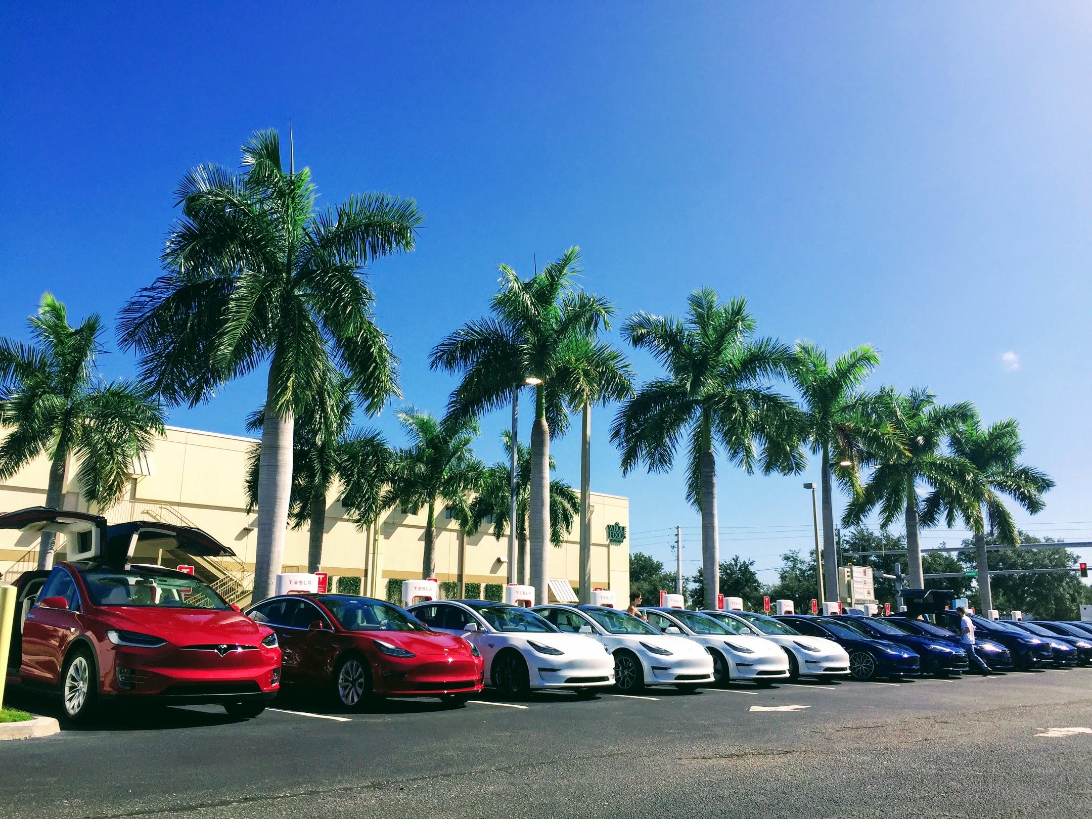 Tesla Model 3, S, X fleet