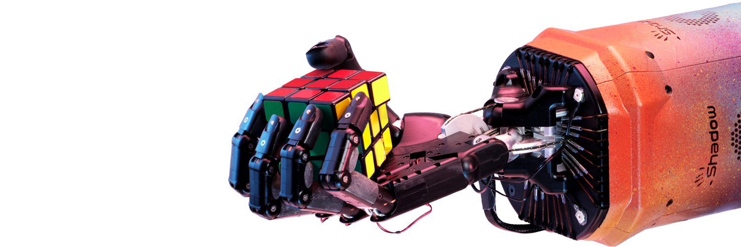 What Does An AI Velociraptor Have To Do With Rubik's Cube?