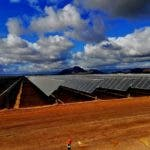 Renewable Energy Developers Ready To Quit Australia Over Idiotic Government Policies