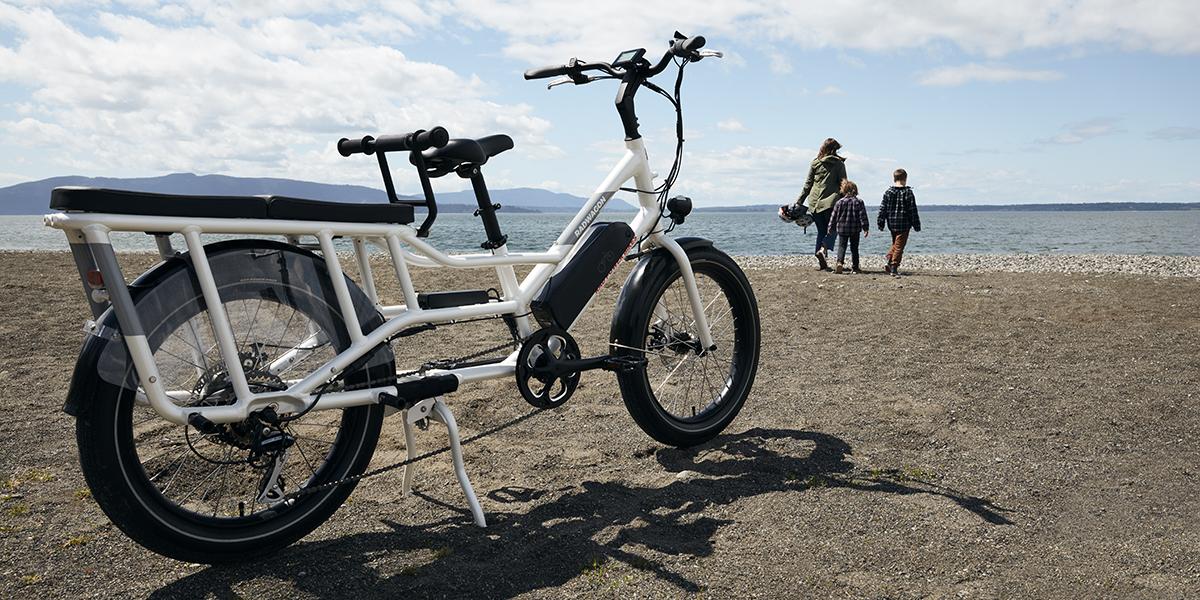 Rad Power Bikes RadWagon 4