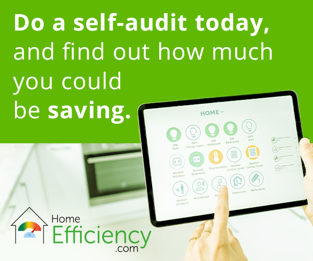 Home efficiency self-audit
