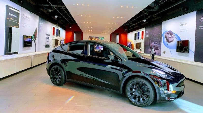 photo of Charleston Animal Society Is Raffling Of A Tesla Model Y To Help Animals In Need image