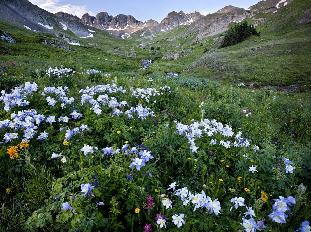 """Administration Releases """"America The Beautiful"""" Conservation Plan"""