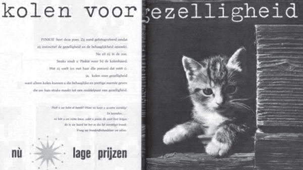 Pinkie the cat in Beatrijs; Catholic weekly for women, 19-07-1958 provided by Sven Ringalberg